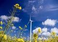 Wind turbine, yellow field. Stock Photos