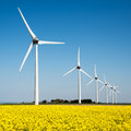 Wind turbine in a yellow field of rapeseed Royalty Free Stock Photo