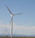 Wind turbines farm over bue sky Stock Image