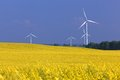 Wind turbines farm on the rape field ecology environment friendly natural energy Stock Photography