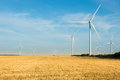 Wind turbines farm. Wild mill in field with blue sky. Power and energy. Royalty Free Stock Photo