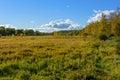 Wind turbines and grassland Royalty Free Stock Photo