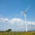 Wind turbines group of modern generating electricity Royalty Free Stock Photos