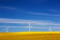 Wind turbines on spring field alternative clean energy and natural source of is gaining pupularity eco farm Royalty Free Stock Photography
