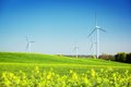 Wind turbines on spring field. Natural energy