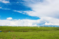 Wind turbines in a sunny field Stock Photos