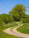 Winding dirt path road with tree