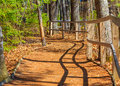 Winding Forest Path Fence Royalty Free Stock Photo