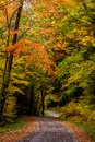 Winding Gravel Back Road - Autumn / Fall Scenery - West Virginia Royalty Free Stock Photo