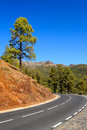Winding mountain road landscape of the island tenerife canary islands Royalty Free Stock Image