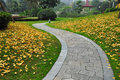 Winding Path in Autumn Park Royalty Free Stock Photo