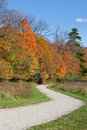 Winding path with fall colors Royalty Free Stock Photo