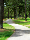 Winding path through park Stock Image