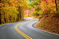 Winding road Stock Images
