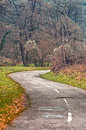 Winding road curves through autumn trees foliage and Royalty Free Stock Photo