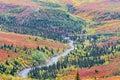 Winding road in Denali national park in Alaska Royalty Free Stock Photo