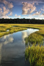 Winding Salt Marsh Royalty Free Stock Photo