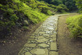 Winding stone pathway summer park Royalty Free Stock Image