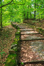 Winding stone steps with foliage vertical path made ​​of among the trees in a city park is covered Royalty Free Stock Photo