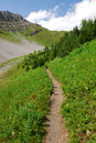 Winding trail to mountain top Royalty Free Stock Photography
