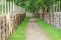 Winding walkway between decorative wooden hedges Royalty Free Stock Photo