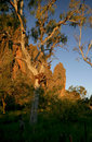 Windjana gorge in the kimberleys Stock Images