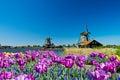 Windmühle in Holland Lizenzfreie Stockbilder