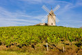 Windmill in Burgundy Royalty Free Stock Photo