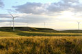 Windmill farm at sunset Royalty Free Stock Photo