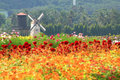 Windmill netherlands style in flower gar Stock Images
