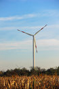 Windmill for renewable electric energy production