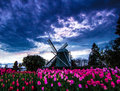 Windmill of Skagit Valley Royalty Free Stock Photo