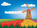 Windmill and tulips cartoon landscape with a traditional tulip flowers Royalty Free Stock Photo