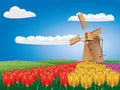 Windmill and tulips cartoon landscape with a traditional tulip flowers Stock Photography