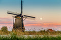 Windmills of kinderdijk, Holland Royalty Free Stock Photo