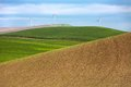 Windmills and wheat fields Royalty Free Stock Photo