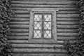 Window behind iron bars on a wall black and white Royalty Free Stock Photo