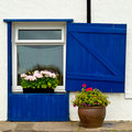 Window with blue wooden blinds and flowers Royalty Free Stock Images