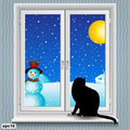 Window and cat winter Royalty Free Stock Images