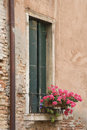 Window with closed shutters and flowers. Stock Photography