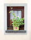 Window Decorated With Flower P...