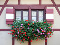 Window with flower in Nuremberg Stock Image