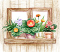 Window with flower pots pencil hand drawn illustration of a Royalty Free Stock Photo