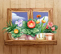 Window with flower pots pencil hand drawn illustration of a Royalty Free Stock Image