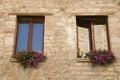 Window flowerpot Royalty Free Stock Photo