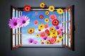 Window of Flowers Stock Photos