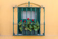Window with flowers in istanbul Royalty Free Stock Photo