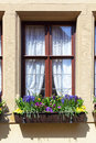 Window with flowers of old house germany Royalty Free Stock Images