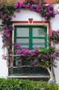 Window framed by flowers Stock Images