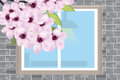 Window on a gray brick wall with a blossoming branch of a cherry Royalty Free Stock Photo